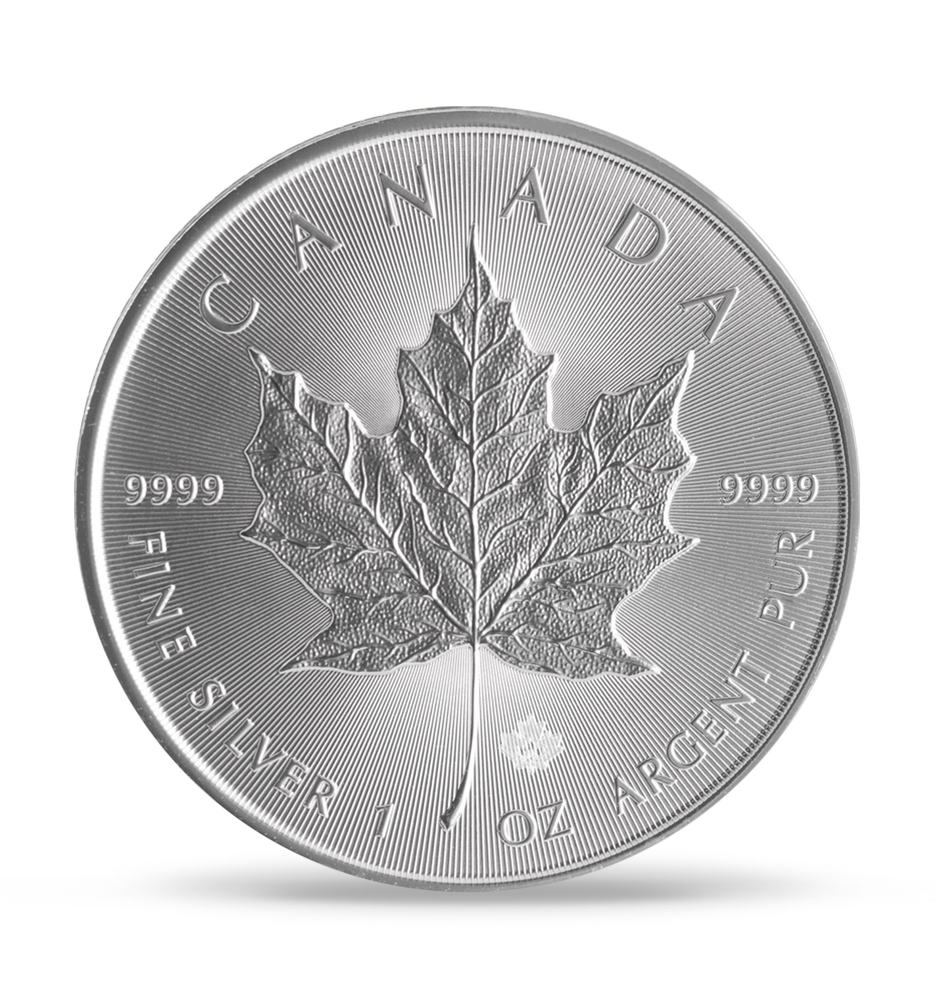 silver-canadian-back