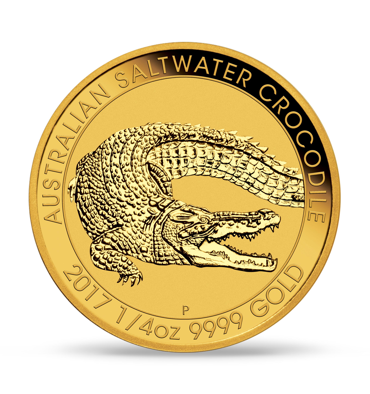 Gold Saltwater Croc bc