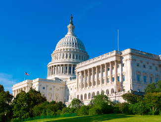 What Can Investors Expect From the New Congress?